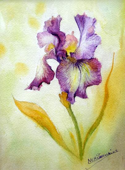 Maison Interieur Bois Moderne : tableaux iris, aquarelles iris